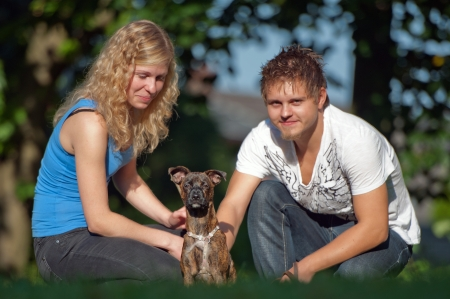 exploratory: Young peoples with curious mixed breed