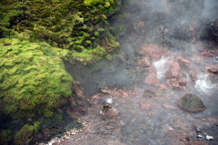 The north west of Iceland, in the largest hot spring in Europe, Deildartunguhver, bubbling springs of hot water Stock Photo