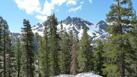 adams: Ansel Adams Wilderness