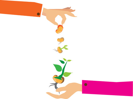 watering plant: Vector hand holding watering can watering plant in pot, business concept, flat design