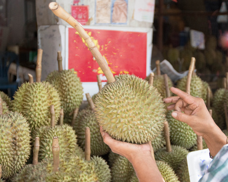 thong: durian, mon, thong