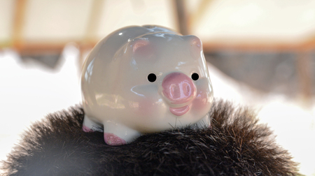 piggy, save money concept