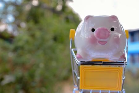 piggy bank with money Banco de Imagens