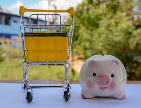 piggy save money Banco de Imagens - 120740894