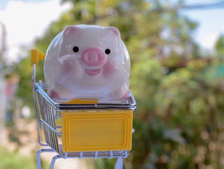 piggy save money Banco de Imagens - 120740900