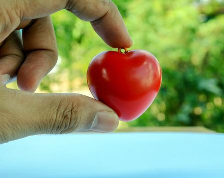 heart in hands Banco de Imagens - 120740903