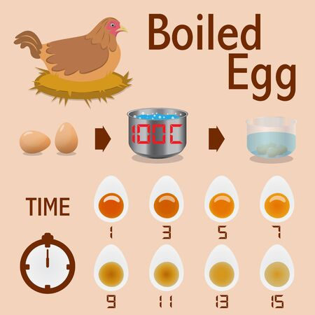 boiled: Infographic Of Time To Boiled Egg. Vector Illustration