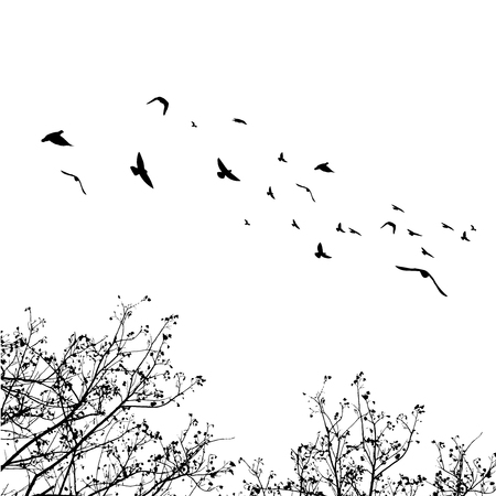 Flying birds and branch silhouettes on white background. Vector illustration. isolated bird flying and branch.