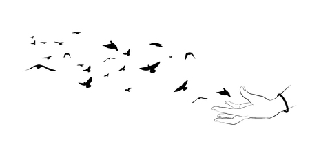 Flying birds and hand silhouettes on white background. Vector illustration. isolated bird flying and hand. drawing anatomy. 向量圖像