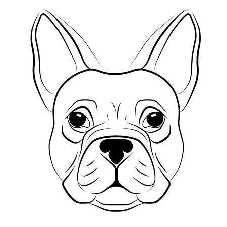 French bulldog head isolated on white background. Stock Illustratie