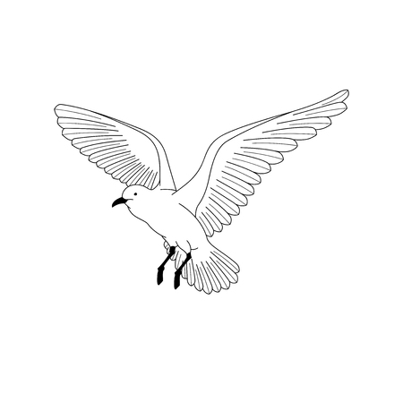Bird flying. illustration vector. hand drawing line art of animal. bird isolated line on white background. symbol of freedom. tattoo design. Ilustração