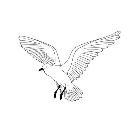 Bird flying. illustration vector. hand drawing line art of animal. bird isolated line on white background. symbol of freedom. tattoo design. Illustration