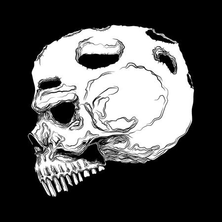 Anatomisch korrekter menschlicher Schädel isoliert. Handgezeichnete Linie Kunst-Vektor-Illustration. Tattoo-Design. Leben und tot. Aufkleber-Vorlage. Vektorgrafik