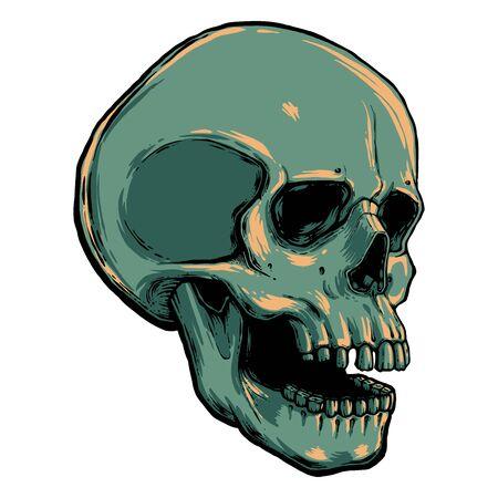 human skull vector illustration. Hand draw line art anatomically correct human skull isolated vector illustration. tattoo design. symbol of life. Vektorgrafik