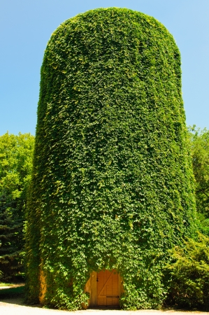 sheeted: old water tower sheeted a green vineyard