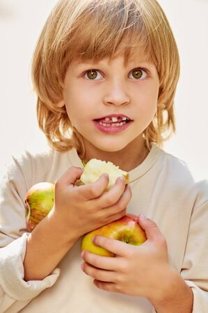 clasps: portrait of little handsome boy clasps apples by hands