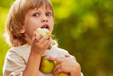 clasps: portrait of little handsome boy clasps apples by hands, outdoor summer autumn warm