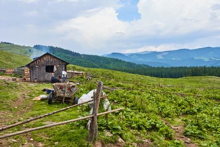 Rural household in Carpathians