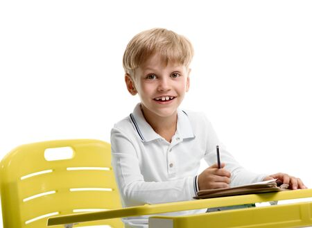 smiling Schoolboy enjoying lesson