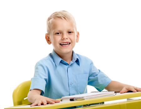 Cheerful schoolboy at the desk