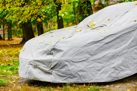 Tarpaulin awning for car