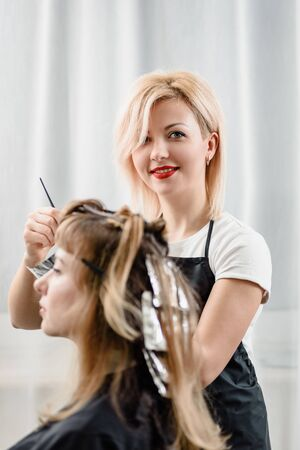 Attractive hairdresser dyeing hair of female client while she sitting in chair Zdjęcie Seryjne