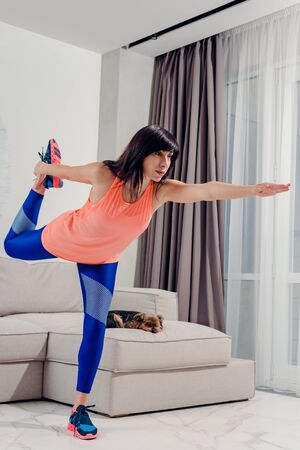 Young athletic brunette in sportswear doing fitness at home Stockfoto