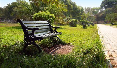 A lone park bench in a botanical garden park Stock Photo - 4712746