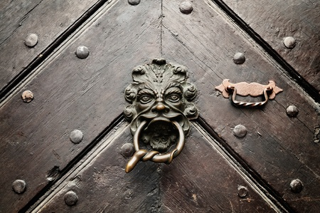 door knocker: A lion door knocker with a snake encoiled ring in its mouth welcomes visitors on an ancient door in Bamberg, Germany.