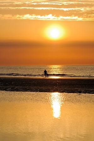 german north sea region: father and son taking a walk on the beach at sunset.