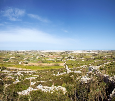 Panorama of Maltese countryside with foreground vegetation. View from Laferla Cross, Siggiewi, Malta  photo