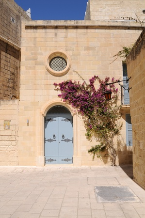 limestone: Large bougainvillea tree growing by doorway in the village of Mdina, Malta.