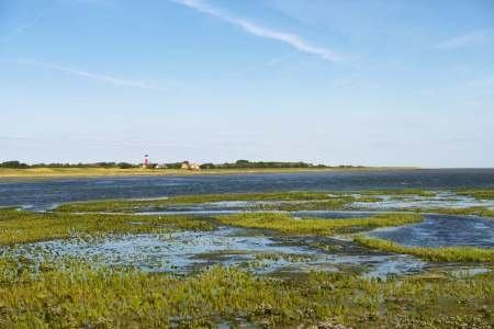 german north sea region: View of the island of Wangerooge in the German North Sea with old Lighthouse.