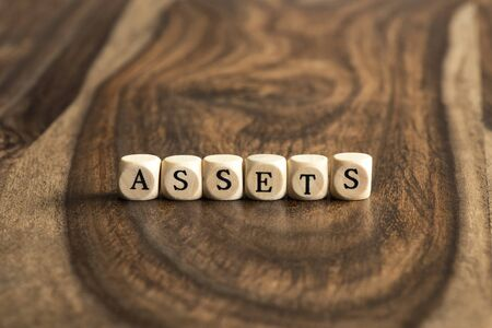 assets: ASSETS word background on wood blocks