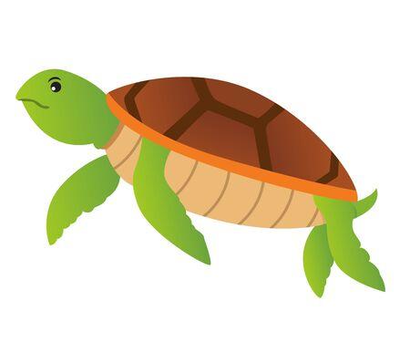 Vector of turtle flat design