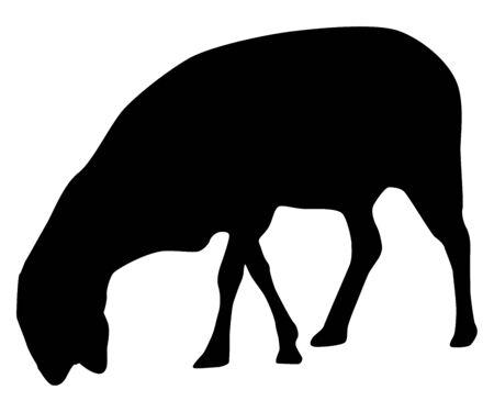 vector of a black goat