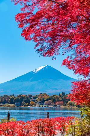 Mt.Fuji in autumn Redakční