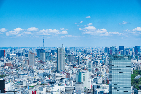 TOKYO, JAPAN-April 23, 2017: Aerial view of the Japanese capital city seen from the Metropolitan Government Building (Tokyo City Hall)