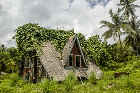 An abandoned crusty house in tropical forest