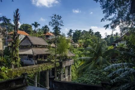 Balinese town  Indonesia, Bali, Ubud