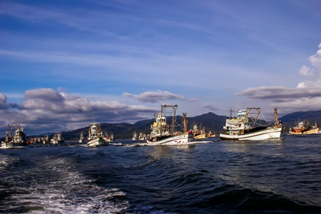 Many fishing ships going back from the sea  Editorial