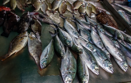 Various of seafood on the market  Thailand, Phuket  Stock Photo