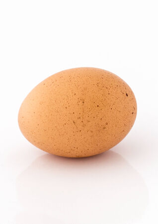 Chicken egg isolated on white background photo