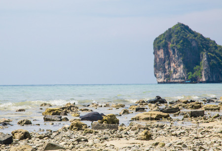 Rocky Beach and cliff in Southern Thailand