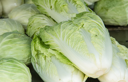 Three pieces of chinese cabbage along with cabbage Stock Photo