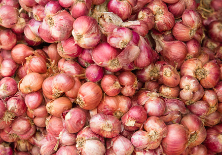 Shallot onion background from the market Stock Photo