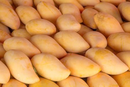 Ripe thai mango background (thai market)