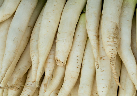 Daikon roots background. Market in Thailand. Banco de Imagens