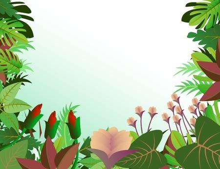 de fondo de los bosques tropicales
