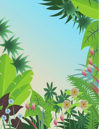 tropical forest background Stock Vector - 12542555